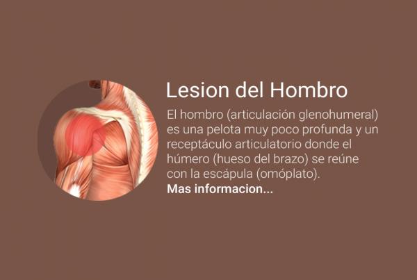 hombro-copy